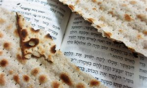 The Passover Lamb in the Seder and for Disciples of Yeshua