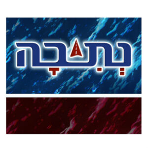 Netivah logo