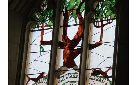 stained glass window of olive tree from Christ Church